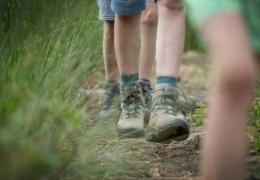 Sanering van 3 wandelroutes in Meetjesland