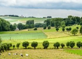 Landschapsbeleving Vlaamse Ardennen