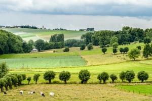 Oproep mooiste koesterplekje in de Vlaamse Ardennen