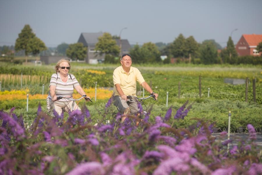 Vernieuwde routes Bloeiend Oost-Vlaanderen