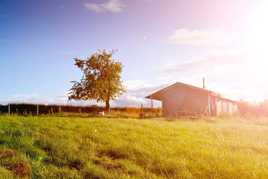 Bedjes spreiden op de boerderij – artikel Boer en Tuinder